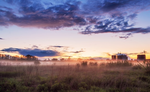 Nevelig veld met mooie bewolkte hemel bij zonsondergang