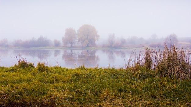 Nevelige ochtend op de oever van de rivier. bomen worden weerspiegeld in de rivier