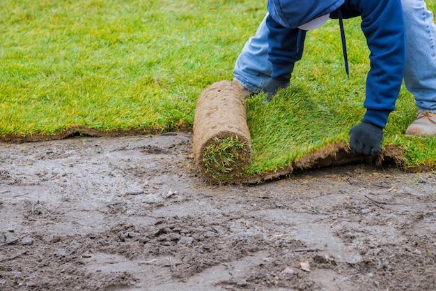 Nieuwe gazonrollen van vers grasgras klaar om voor tuinieren te worden gebruikt
