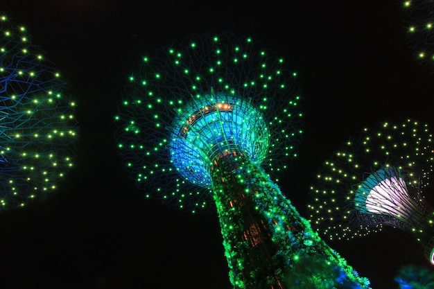Night show supertrees gardens by the bay een natuurpark