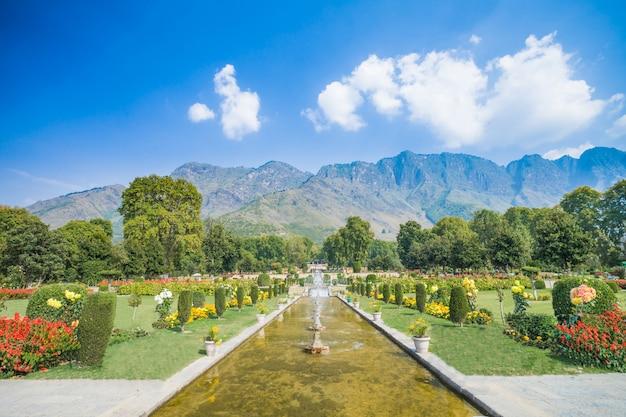 Nishat bagh is een mughal-tuin met terrassen, gebouwd op dal lake, srinagar