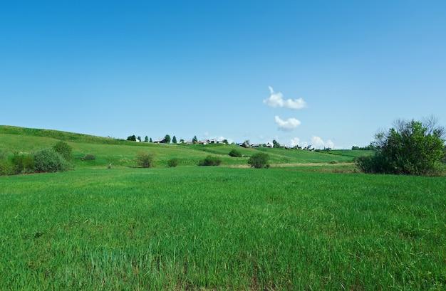Noord-russisch dorp. oblast arkhangelsk. russische noorden.
