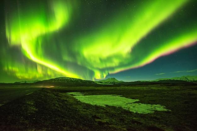 Noordelijke lichtenberg in ijsland.