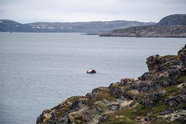 Noordelijke natuur van de arctische kust