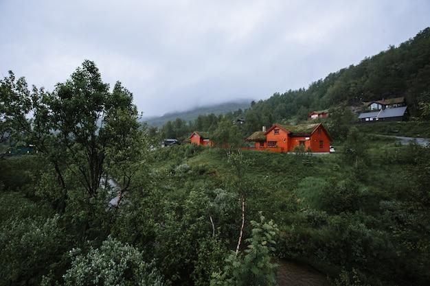 Noors landschap met huizen met aarde op hun daken en gras groeit