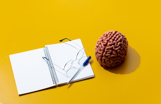 Notebook, hersenen en bril op geel oppervlak