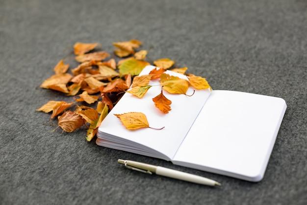 Notebook met herfstbladeren