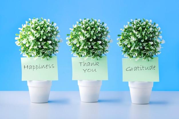 Notities met woorden dank u, dankbaarheid en geluk op groene planten in potten.