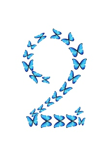 Nummer twee van blauwe tropische vlinders geïsoleerd op een witte achtergrond