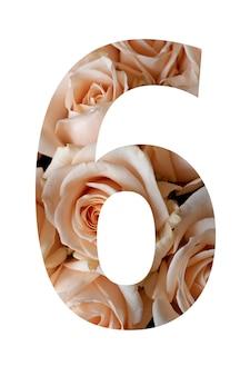 Nummer zes van roze bloemen op een witte muur,