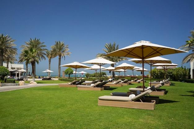 Oase van het hotel abu dhabi aan de arabische golf, abu dhabi. milieuvriendelijk strand.