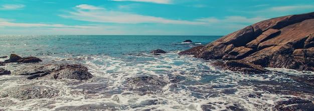 Oceaan sri lanka. natuur en palmbomen