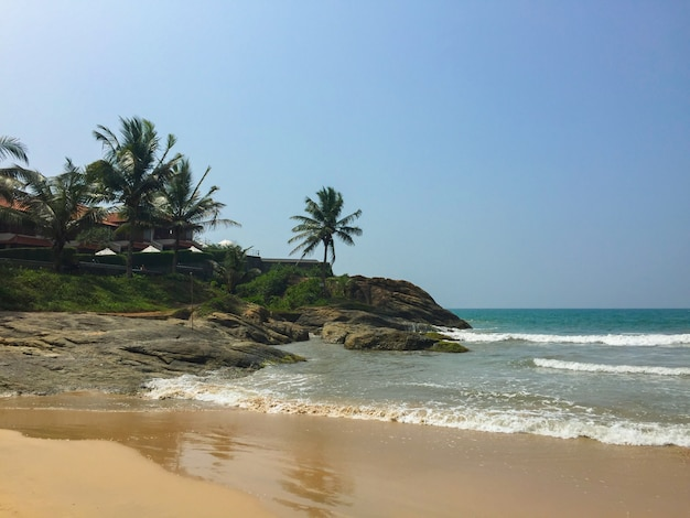 Oceaan zandstrand in sri lanka met palmbomen
