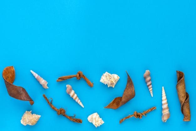 Oceaansamenstelling met shells op blauw document