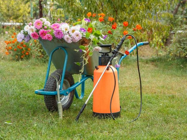 Ochtend na het werk in de zomertuin. kruiwagen met bloemen en tuindrukspuit op groen gras.