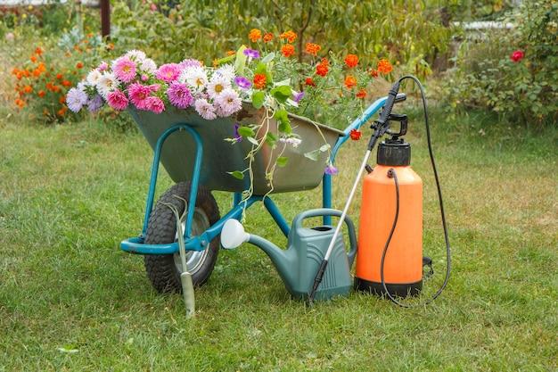 Ochtend na het werk in de zomertuin. kruiwagen met bloemen, gieter en tuindrukspuit op groen gras.