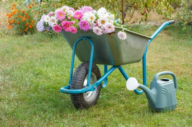 Ochtend na het werk in de zomertuin. kruiwagen met bloemen, gieter op groen gras.