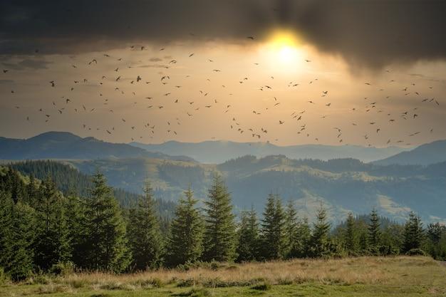 Ochtend zonnige dag is in berglandschap