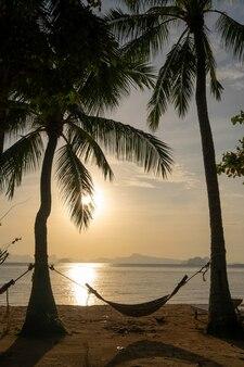 Ochtendlicht met mist op zandstrand met silouettehangmat die tussen kokospalm hangt