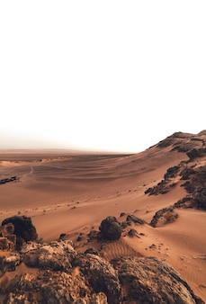 Ochtendzonsopgang in de woestijn (sahara)