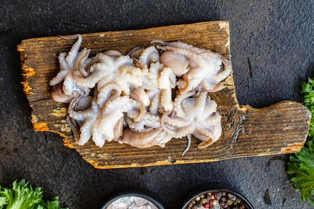 Octopus rauwe zeevruchten verse babymaat