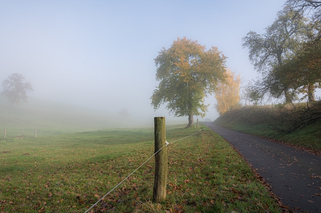 Odenwald op een mistige ochtend