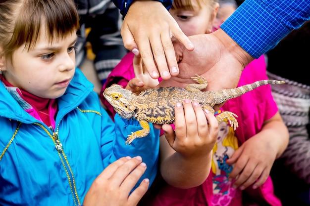 Oekraïne. khmelnytsky regio. mei 2018. kinderen kijken nieuwsgierig naar de hagedis. kinderen raken hagedis aan met hun handen_