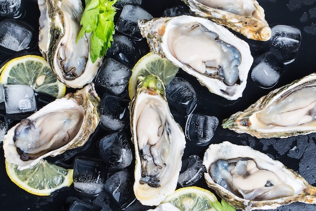 Oesters close up