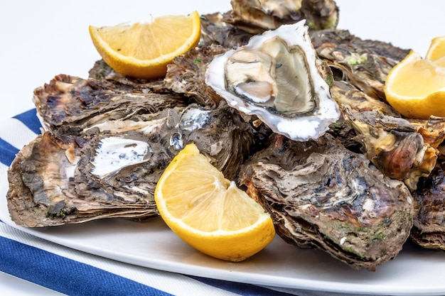 Oesters in een bord