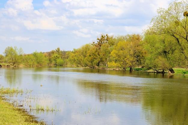 Oever van een kleine rivier met weelderige bomen op een lentedag tegen de blauwe hemel. natuurlijk landschap
