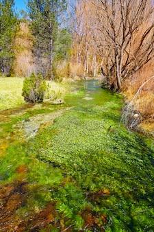Ojos del cabriel rivierogen in sierra de albarracin