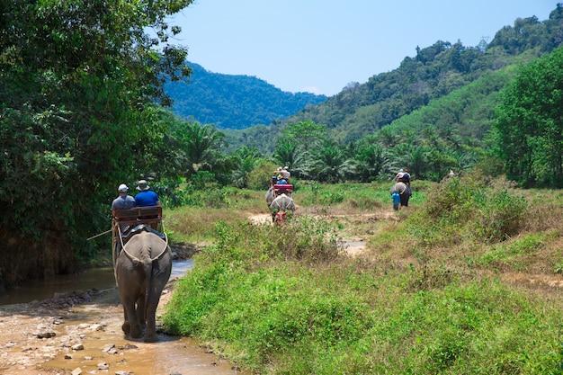 Olifantentrekking in kao-sok, thailand