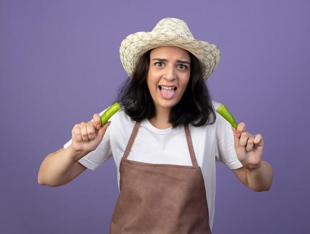 Onaangename jonge brunette vrouwelijke tuinman in uniform met tuinhoed steekt tong uit en houdt de helft van hete peper vast die op paarse muur wordt geïsoleerd