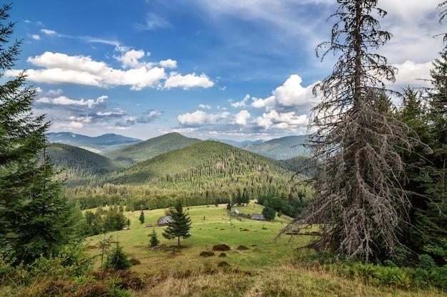 Onbeschrijfelijk landschap in de karpaten. sinevir.