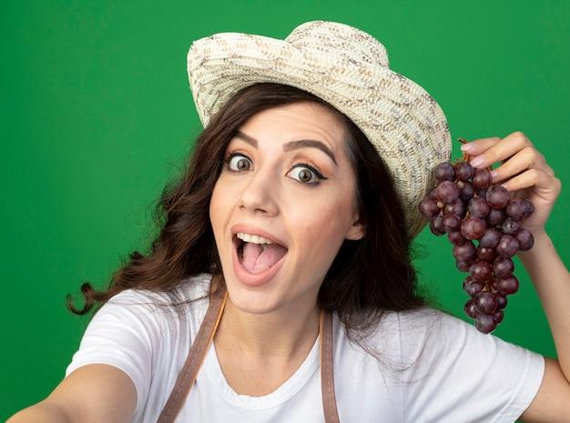 Onder de indruk jonge vrouwelijke tuinman in uniform dragen tuinieren hoed houdt druiven geïsoleerd op groene muur met kopie ruimte