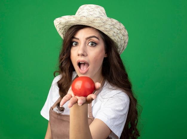 Onder de indruk jonge vrouwelijke tuinman in uniform dragen tuinieren hoed houdt tomaat geïsoleerd op groene muur met kopie ruimte