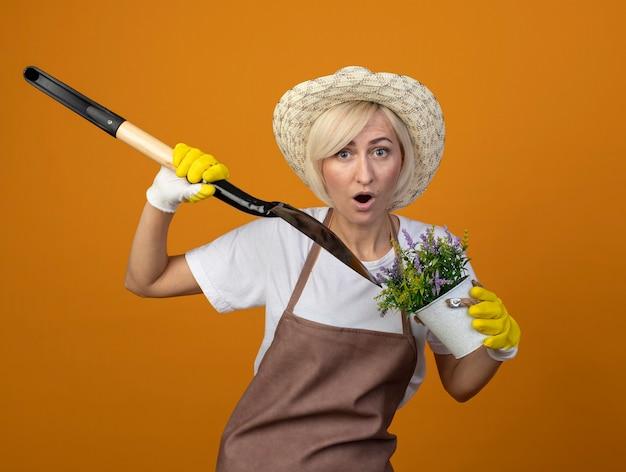 Onder de indruk tuinman vrouw van middelbare leeftijd in tuinman uniform met hoed en tuinhandschoenen spit bloempot met schop kijkend naar voorzijde geïsoleerd op oranje muur