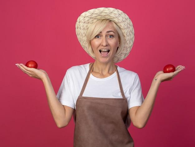 Onder de indruk van een blonde tuinmanvrouw van middelbare leeftijd in uniform met een hoed die tomaten vasthoudt en naar de voorkant kijkt geïsoleerd op een karmozijnrode muur