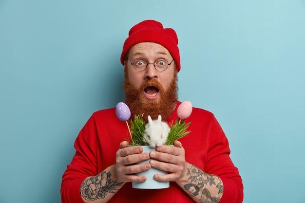Onder de indruk verwonderde bebaarde hipster man houdt pot met kleine witte donzige paashaas en versierde eieren, symbool van de lente en vakantie, draagt rode hoed, trui en bril, poseert over blauwe muur