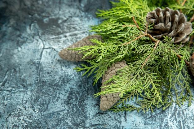 Onderaanzicht gesloten en open dennenappels pijnboomtakken op grijze oppervlakte vrije ruimte