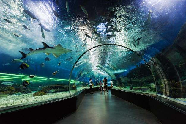 Onderwater tunnel