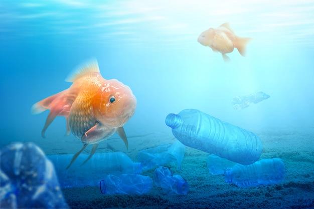 Onderwater weergave met goudvissen en plastic flessen in het water