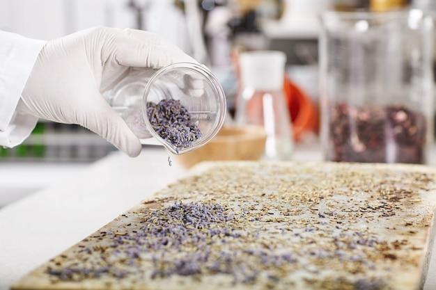 Onderzoeker van laboratorium dat nieuwe soorten vegetatie kweekt