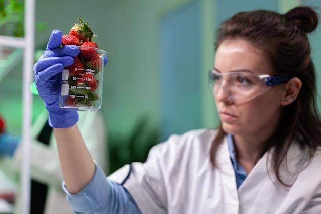 Onderzoeker vrouw arts met biologische aardbei werken bij ggo botanie-experiment