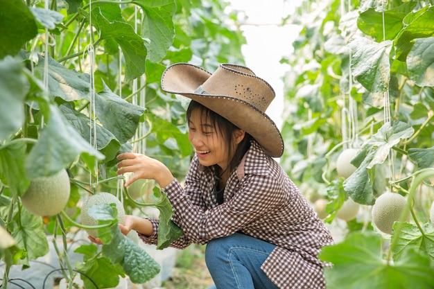 Onderzoekers van planten onderzoeken de groei van meloen.
