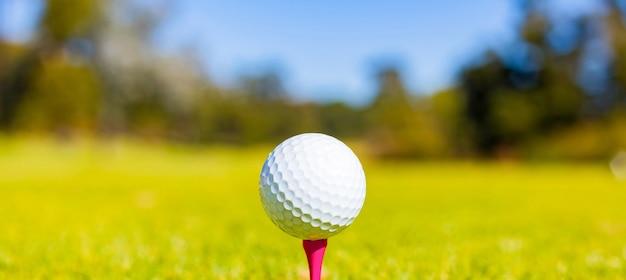 Ondiepe focus van een golfbal op een tee in een baan