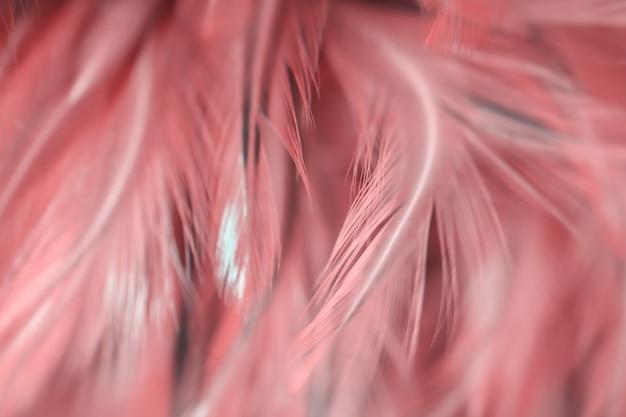 Onduidelijk beeldvogel en kippenveertextuur voor achtergrond, rode kleur van kunstontwerp.