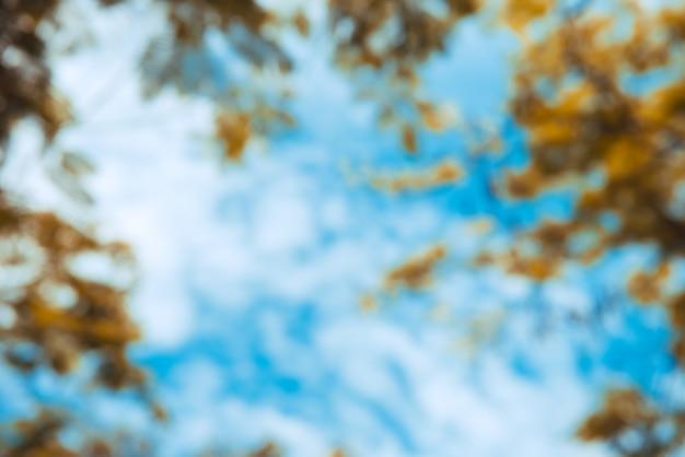 Onduidelijk natuur herfstpark met bokeh zonlicht abstracte achtergrond. kopieer ruimte van reisavontuur en milieuconcept. vintage toonfilter kleurstijl.