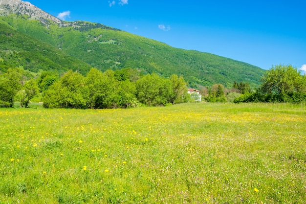 Ongebruikelijk meer plav tussen de pittoreske bergtoppen van montenegro