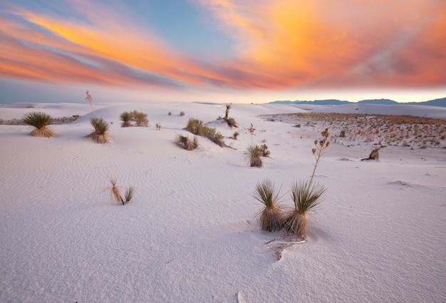 Ongebruikelijke witte zandduinen bij white sands national monument, new mexico, usa